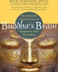 Rick-Hanson-buddhasbrain